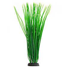 Top Fin® Spikey Grass Plant