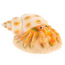 Top Fin® Hermit Crab Aquarium Ornament