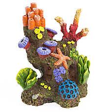 Top Fin® Coral Swim-Thru Aquarium Ornament
