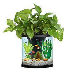Top Fin® Aquaponics Desk Aquarium - 3.5 Gallon