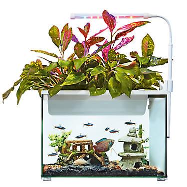 Top fin aquaponics 5 gallon desk aquarium fish starter for 5 gallon fish tank petsmart