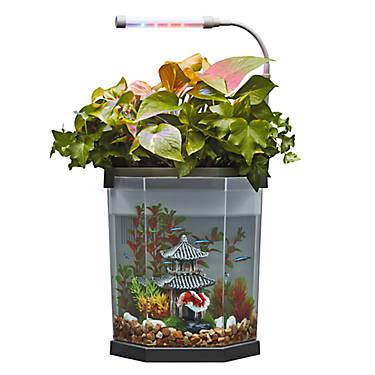 Top Fin 174 Aquaponics 2 Gallon Desk Aquarium Fish Starter