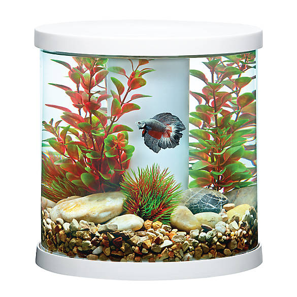 Top fin bettaflo soothe betta aquarium fish starter for Betta fish tanks petsmart
