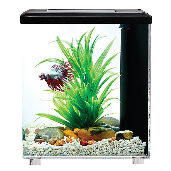 Top fin bettaflo relax betta aquarium fish starter for Betta fish tanks petsmart