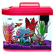 Top Fin® Fish Upon a Star Aquarium Kit - 2 Gallon