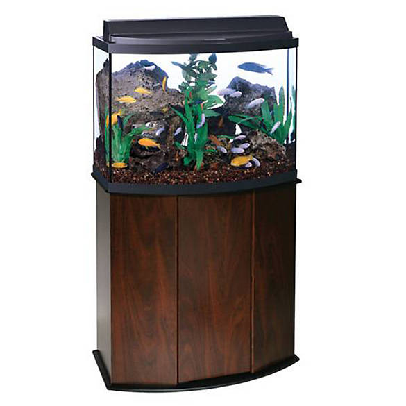 Aqueon 36 gallon led aquarium ensemble fish aquariums for Fish tank supplies near me