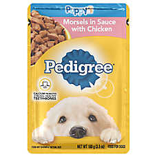 PEDIGREE® Puppy Food - Morsels w/ Chicken