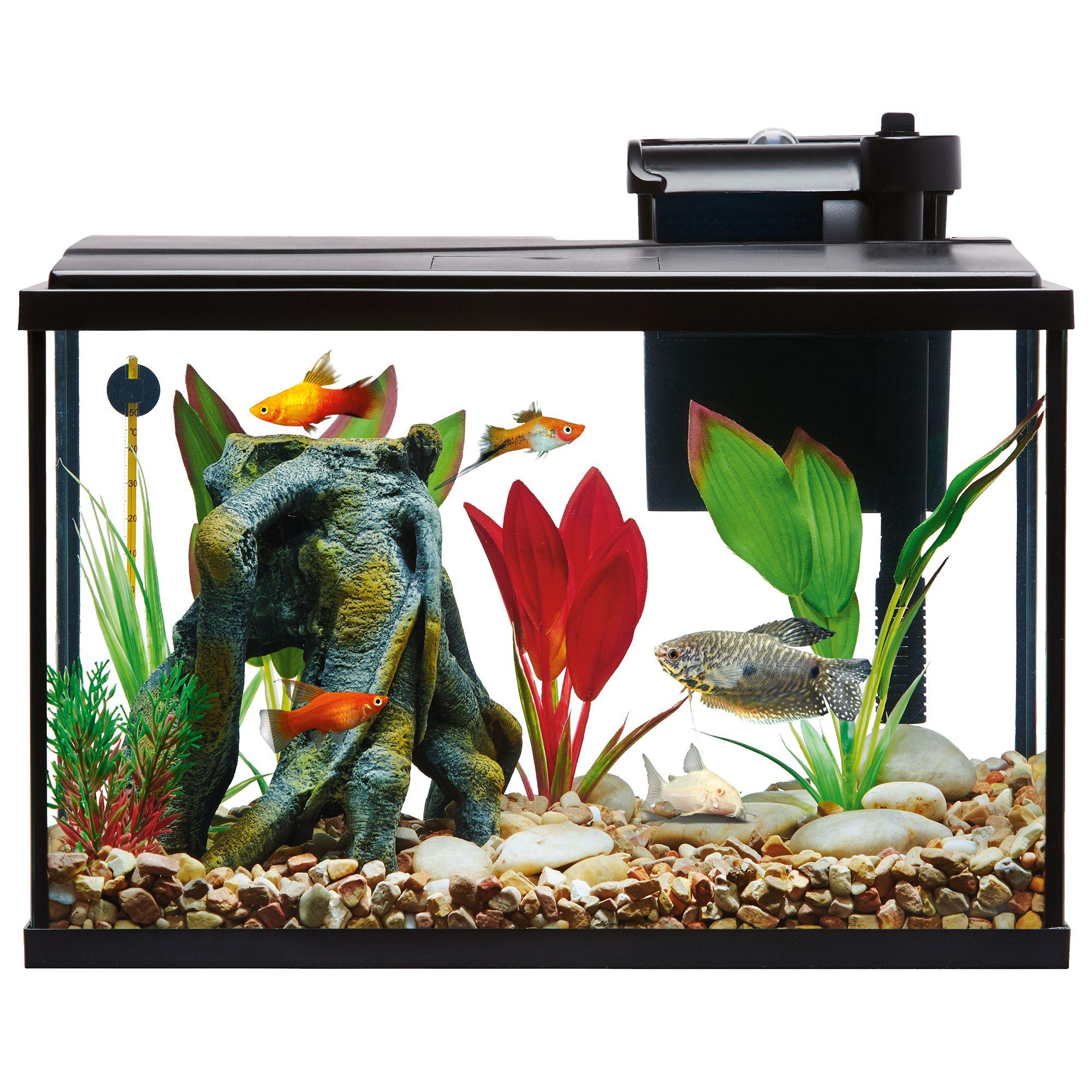 Top Fin Essentials Aquarium Starter Kit Fish Starter Kits Petsmart