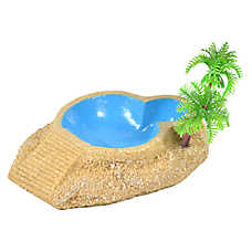 All Living Things® Hermit Crab Swimming Pool
