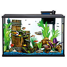 Aquariums, Fish Tank Supplies & Stands | PetSmart