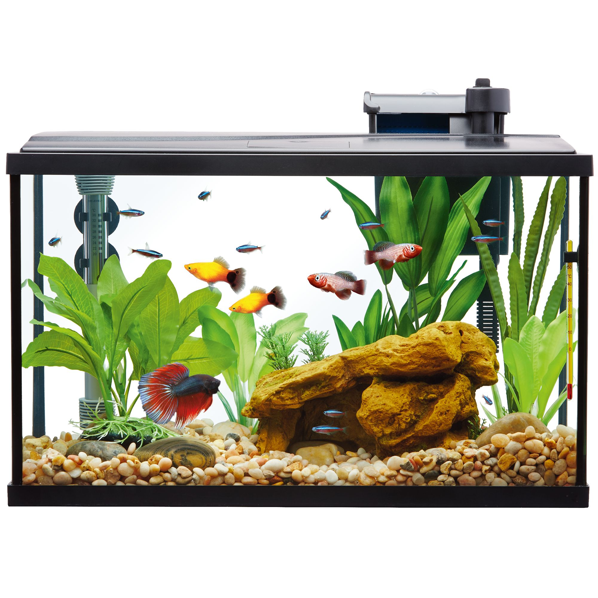 Top Fin Essentials Aquarium Starter Kit