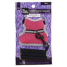 All Living Things® Small Animal Vest and Leash