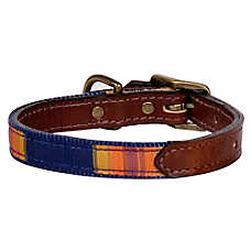 Pendleton National Park Grand Canyon Explorer Dog Collar