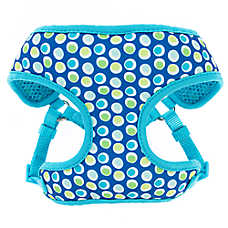 Top Paw® Groovy Dot Comfort Dog Harness