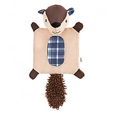 ED Ellen DeGeneres Squirrel Mat Flattie Dog Toy - Crinkle, Plush, Squeaker