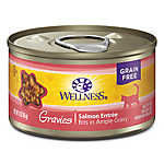 Wellness® Gravies Adult Cat Wet Food - Natural, Grain Free