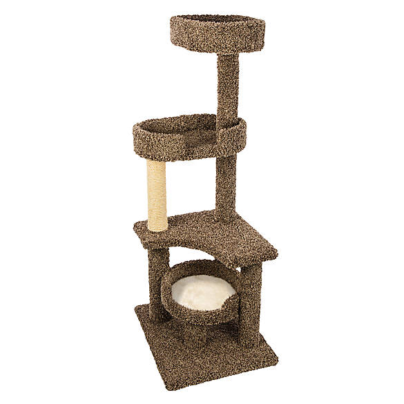 Cat towers, trees, and scratching posts let your cat or kitten climb and claw for some frisky fun! At Petco, you'll find a wide selection of modern cat furniture, multi-level towers, and scratching posts for your furry friend to enjoy. Cat furniture is a staple for many cat owners.