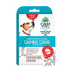 21st Century Calm Paws Calming Dog Collar