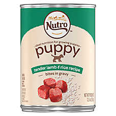 NUTRO™ Puppy Food - Natural, Lamb & Rice