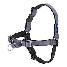 PetSafe® Deluxe Easy Walk Dog Harness
