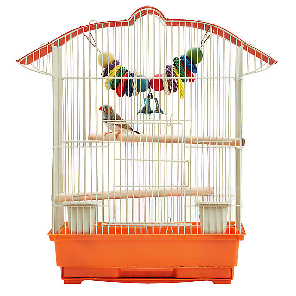 Bird Cages & Bird Cage Stands | PetSmart