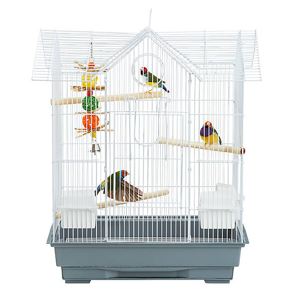 victorian bird images
