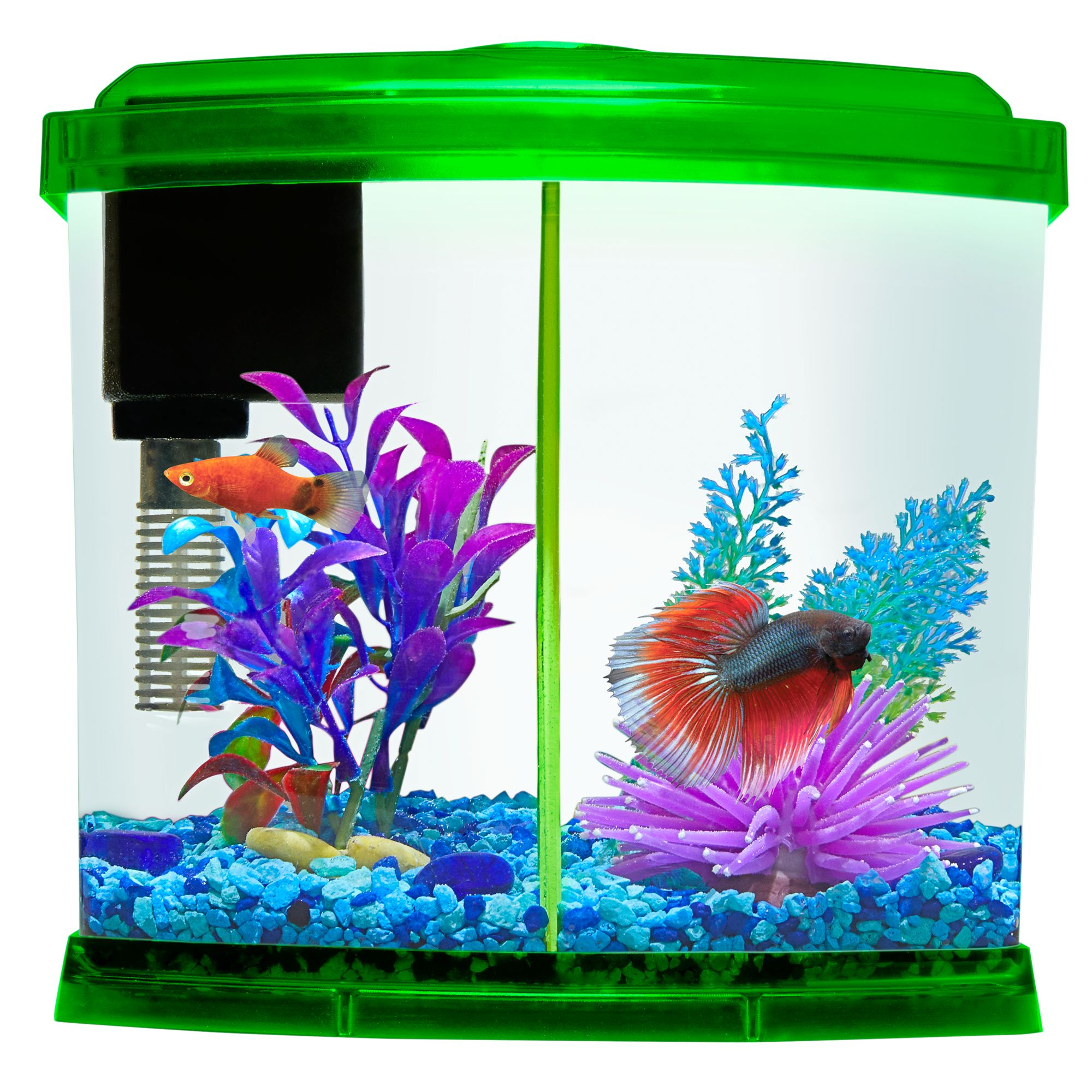 Top Fin Liquidy Split Aquarium 1 Gallon Fish Starter Kits Petsmart