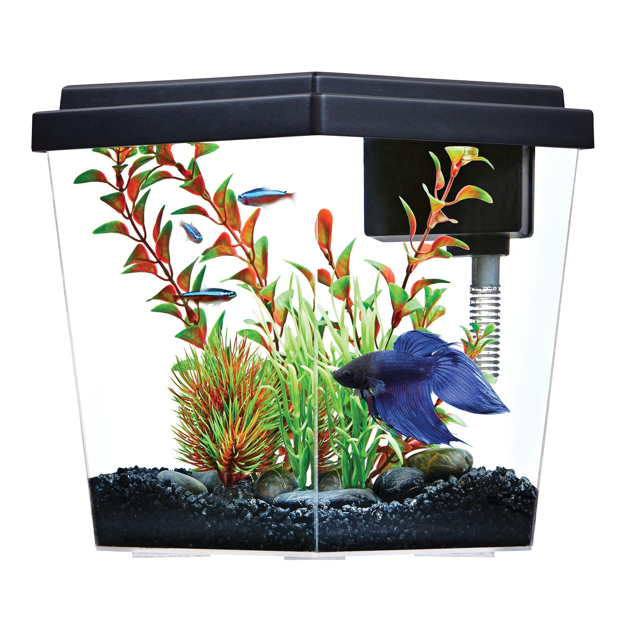 Top Fin Excite Aquarium 1 Gallon Fish Starter Kits Petsmart
