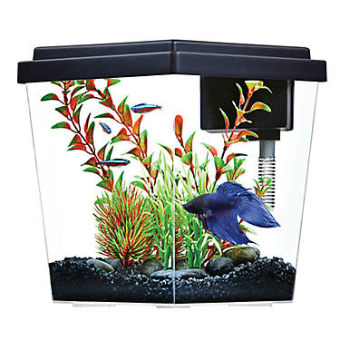 top fin® 1 gallon excite aquairum | fish starter kits | petsmart