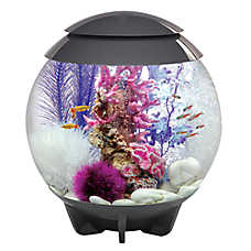 biOrb® HALO 8 Gallon LED Aquarium