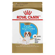 Royal Canin® Breed Health Nutrition Cavalier King Charles Puppy Food