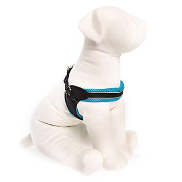 Top Paw® New Fit Dog Harness | dog Harnesses | PetSmart