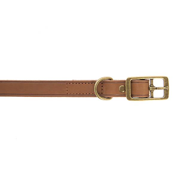 Petmate Leather Dog Collar
