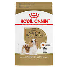 Royal Canin® Breed Health Nutrition™ Cavalier King Charles Adult Dog Food