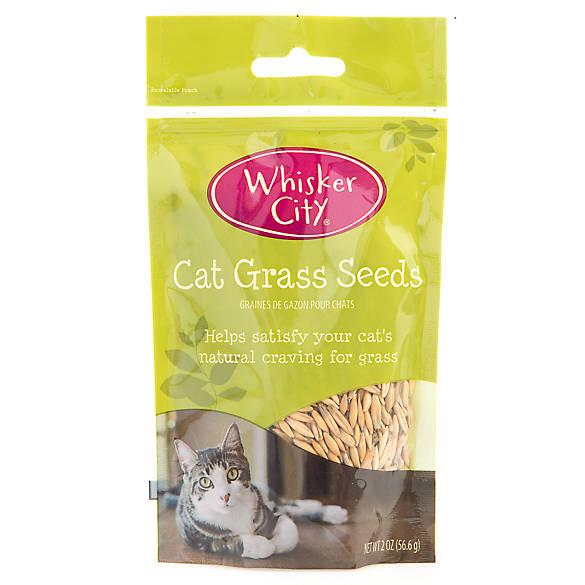 Whisker City Cat Toys
