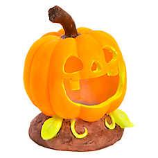 Top Fin® Pumpkin Cave Aquarium Ornament
