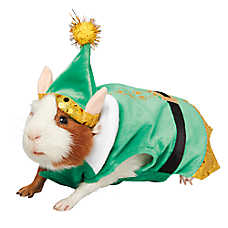 Pet Holiday™ Elf Small Pet Costume