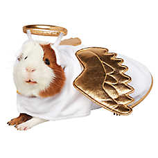 Pet Holiday™ Angel Small Pet Costume