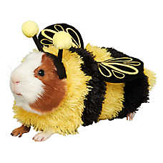 Thrills & Chills Pet Halloween™ Bumble Bee Costume