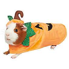 Thrills & Chills Pet Halloween™ Pumpkin Costume
