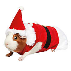 Pet Holiday™ Santa Suit Small Pet Costume