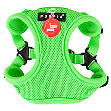 Puppia Neon Comfort Dog Harness