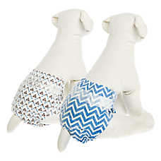 Top Paw® Disposable Fashion Dog Diapers