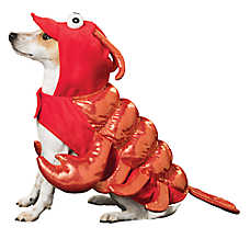 Thrills & Chills™ Halloween Lobster Dog Costume