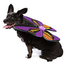 Thrills & Chills™ Halloween Butterfly Dog Wings