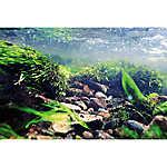 Top Fin® Rock & Underwater Reversible Aquarium Background
