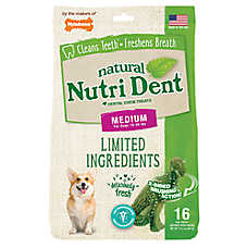 Nylabone® Nutri Dent Limited Ingredients T-Rex Medium Dog Dental Chew - Natural, Fresh Breath