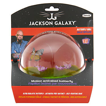 Jackson galaxy butterfly ball cat toy cat electronic for Jackson galaxy cat products