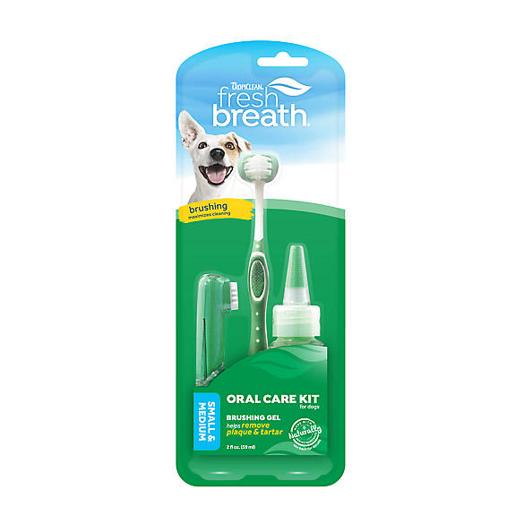 Petsmart Dog Toothbrush For Small Dogs