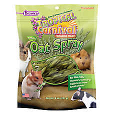 Brown's® Tropical Carnival® Oat Spray Foraging Treats
